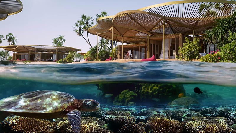 resort red sea development company coral bloom hotel 02